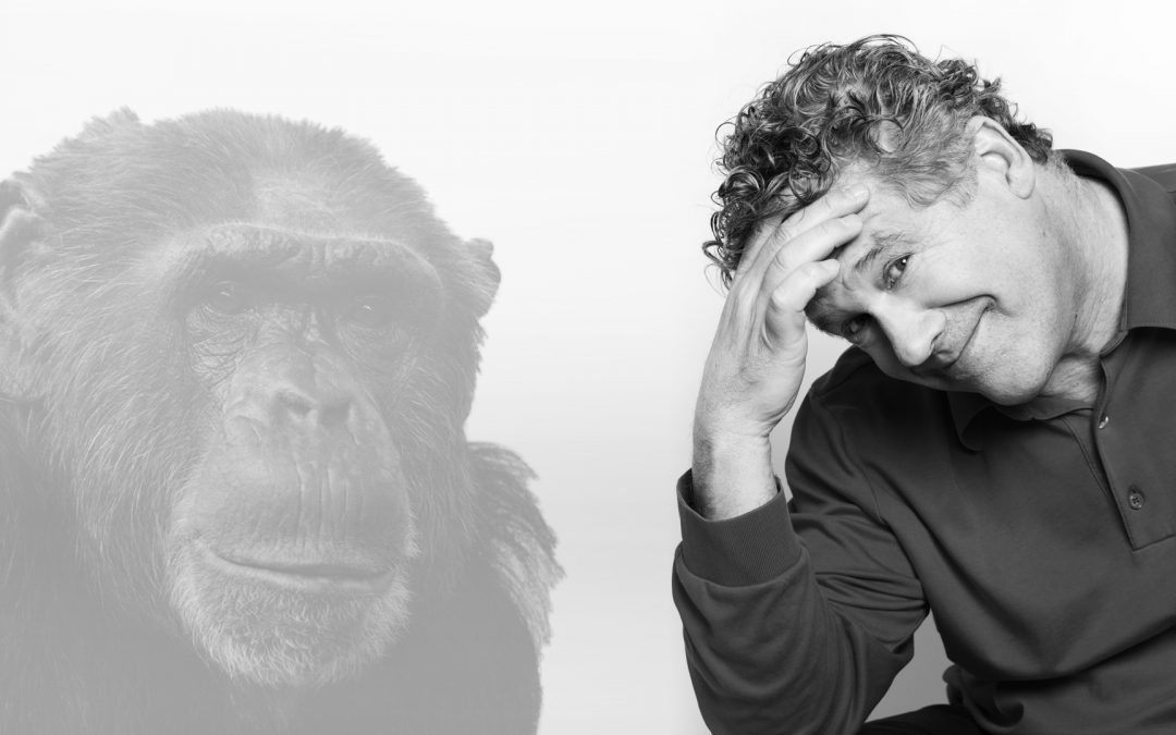 Monkey see – monkey do